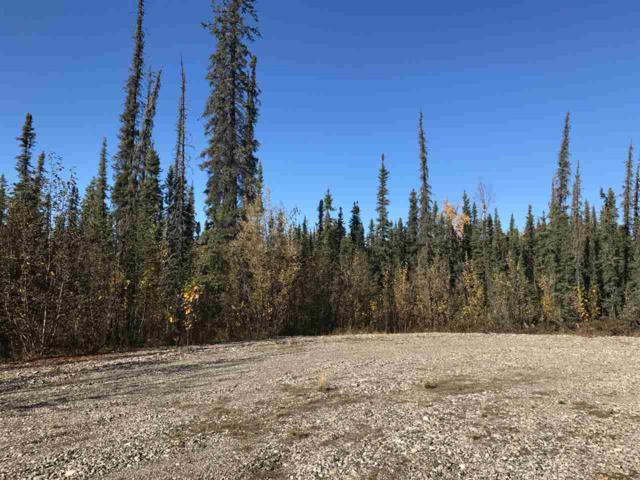 NHN Stepp Court, North Pole, AK 99705 (MLS #135461) :: Madden Real Estate