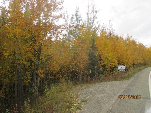 1751 Chena Ridge Road, Fairbanks, AK 99709 (MLS #135482) :: Madden Real Estate