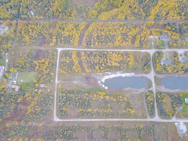 NHN Toolik Drive, North Pole, AK 99705 (MLS #135493) :: Madden Real Estate