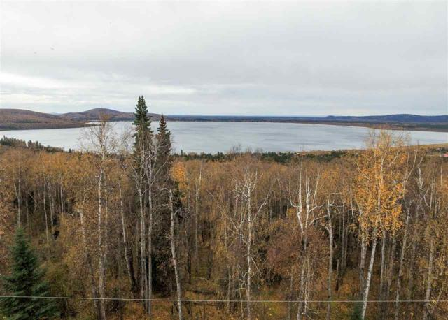 Lot 6 White Birch Road, Salcha, AK 99714 (MLS #135506) :: Madden Real Estate