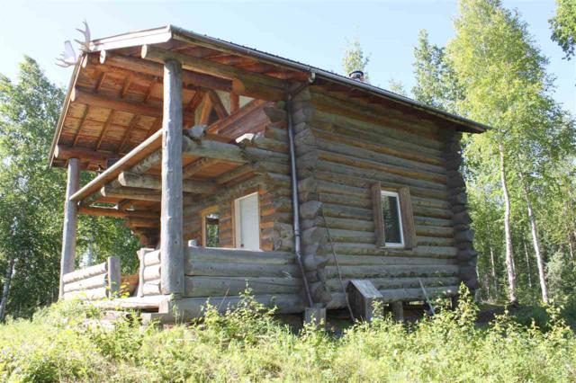 Kantishna River, Remote, AK 99760 (MLS #135560) :: Madden Real Estate