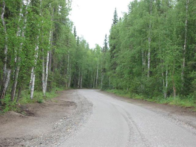 NHN S Blanket Boulevard, North Pole, AK 99705 (MLS #135650) :: Madden Real Estate