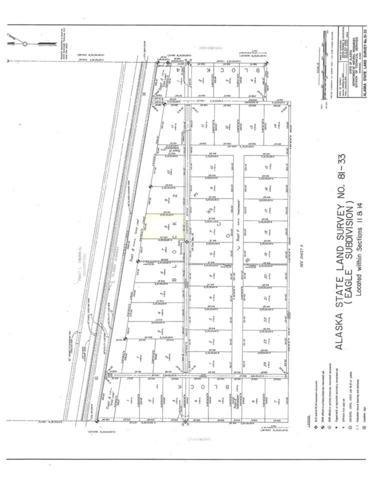 L8 B2 Mentasta Avenue, Tok, AK 99780 (MLS #135662) :: Madden Real Estate
