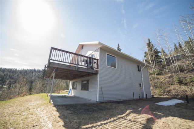 1444 Birchwood Drive, Fairbanks, AK 99709 (MLS #135670) :: Madden Real Estate