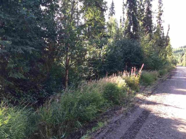 NHN Red Berry Road, Fairbanks, AK 99709 (MLS #135694) :: Madden Real Estate