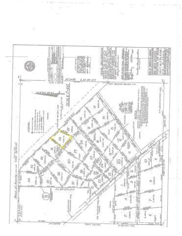 L28 Terri Lane, Delta Junction, AK 99737 (MLS #135707) :: Madden Real Estate