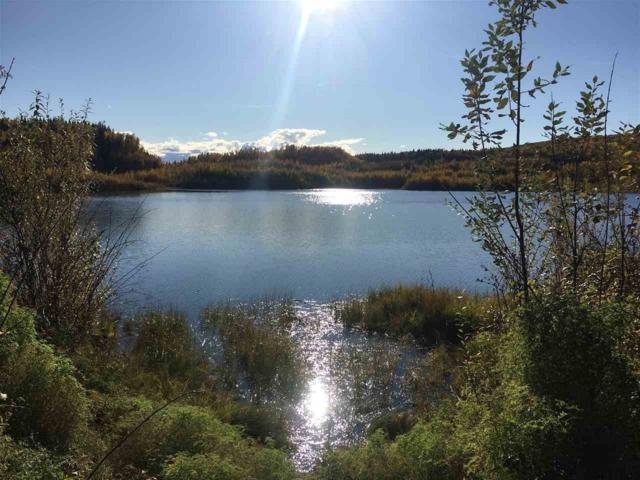nhn Parks Highway, Fairbanks, AK 99709 (MLS #135716) :: Madden Real Estate