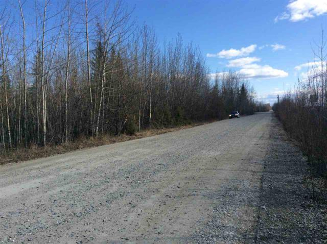 NHN Richardson Highway, Fairbanks, AK 99705 (MLS #135762) :: Madden Real Estate