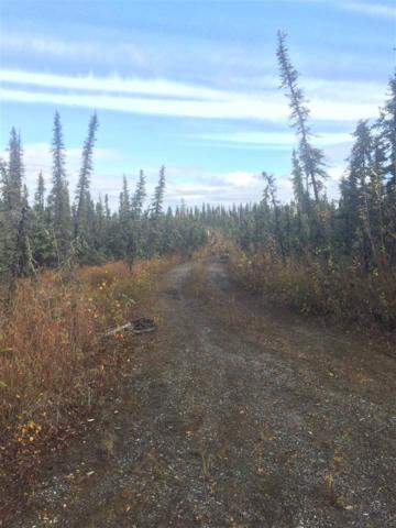 2295 Maria Street, Fairbanks, AK 99709 (MLS #135765) :: Madden Real Estate
