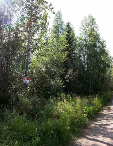NHN None Assigned, North Pole, AK 99705 (MLS #135774) :: Madden Real Estate