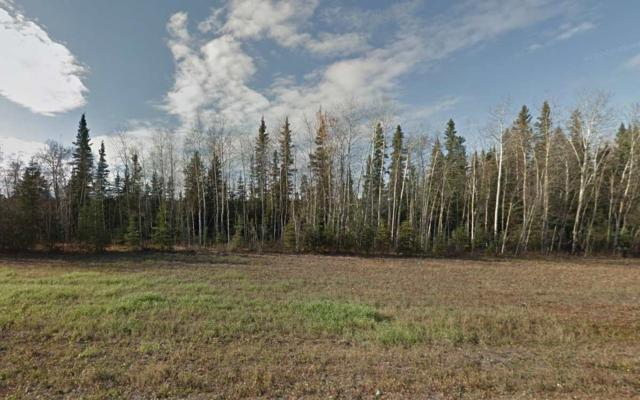 NHN Richardson Highway, Salcha, AK 99714 (MLS #135783) :: Madden Real Estate