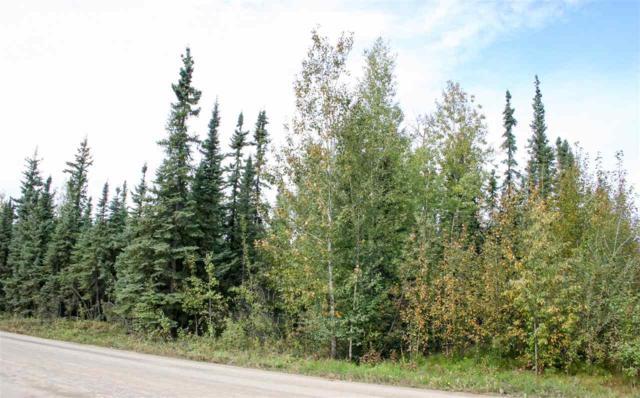 NHN Mavencamp Circle, North Pole, AK 99705 (MLS #135795) :: Madden Real Estate
