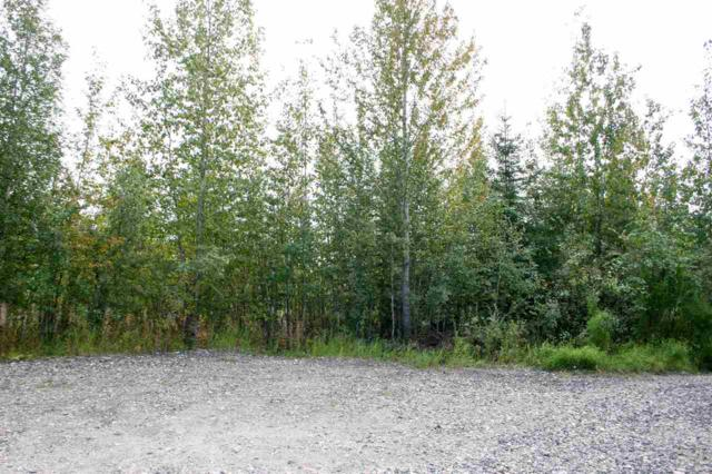 NHN Missy Court, North Pole, AK 99705 (MLS #135796) :: Madden Real Estate