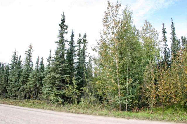 NHN Mavencamp Circle, North Pole, AK 99705 (MLS #135797) :: Madden Real Estate
