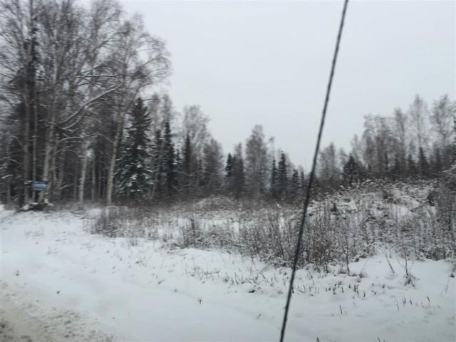 LOT 5 SEC 12 Skyridge Drive, Fairbanks, AK 99712 (MLS #135815) :: Madden Real Estate
