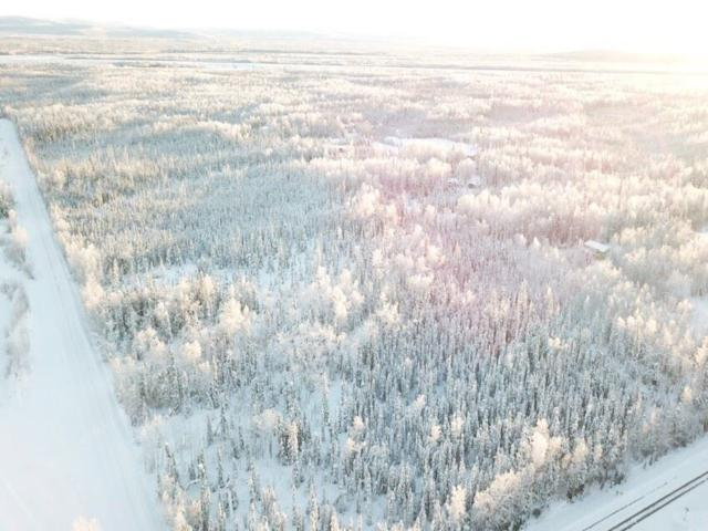 NHN Nelson Road, North Pole, AK 99705 (MLS #135853) :: Madden Real Estate