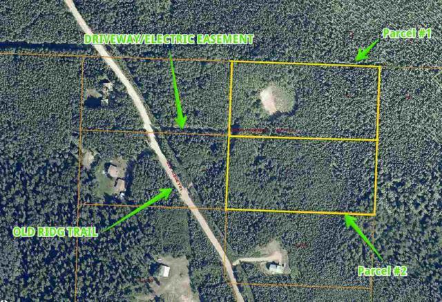 NHN Old Ridge Trail, Fairbanks, AK 99709 (MLS #135861) :: Madden Real Estate