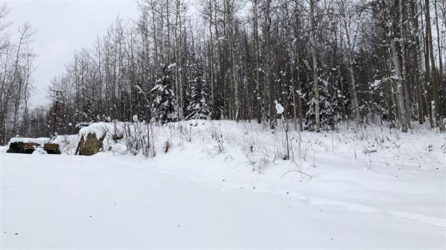 2622 Stellar Way, Fairbanks, AK 99712 (MLS #135876) :: Madden Real Estate