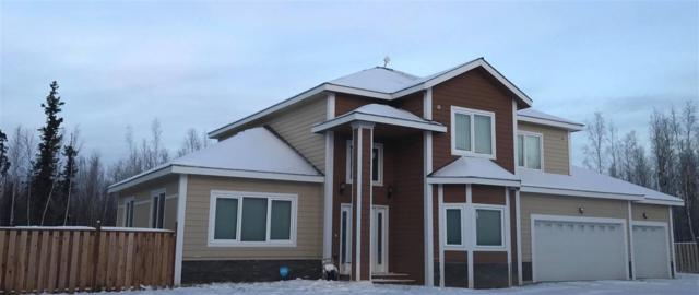 4560 Tern Lane, Delta Junction, AK 99737 (MLS #135895) :: Madden Real Estate