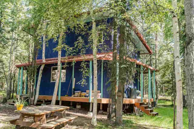 1797 Iniakuk Avenue, Fairbanks, AK 99709 (MLS #135930) :: Madden Real Estate