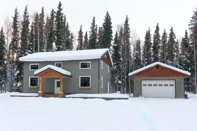 5915 Bullwinkle Court, Salcha, AK 99714 (MLS #135948) :: Madden Real Estate
