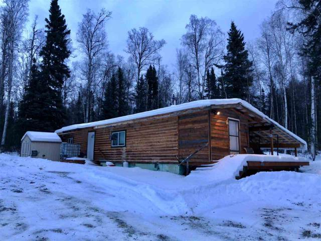 6900 Johnson Road, Salcha, AK 99714 (MLS #136001) :: Madden Real Estate