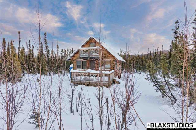 11333 Salcha Drive, Salcha, AK 99714 (MLS #136054) :: Madden Real Estate