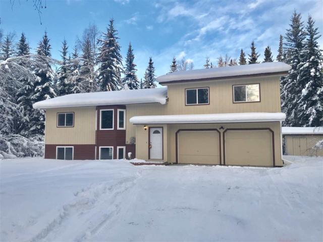3004 Timberbrook Drive, North Pole, AK 99705 (MLS #136141) :: Madden Real Estate