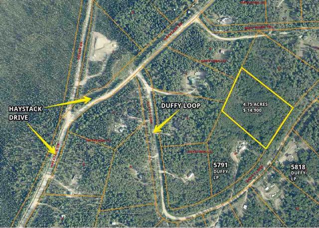 NHN Duffy Loop, Fairbanks, AK 99712 (MLS #136198) :: Madden Real Estate