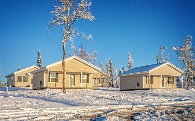 2180 Nelson Road, North Pole, AK 99705 (MLS #136246) :: Madden Real Estate