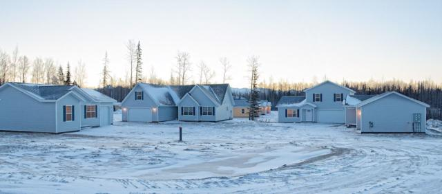 2160 Nelson Road, North Pole, AK 99705 (MLS #136258) :: Madden Real Estate