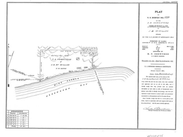 NHN Herendeen Bay, Port Moller, AK 99571 (MLS #136264) :: Madden Real Estate