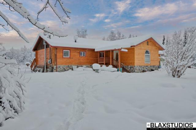 2095 Bradway Road, North Pole, AK 99705 (MLS #136274) :: Madden Real Estate