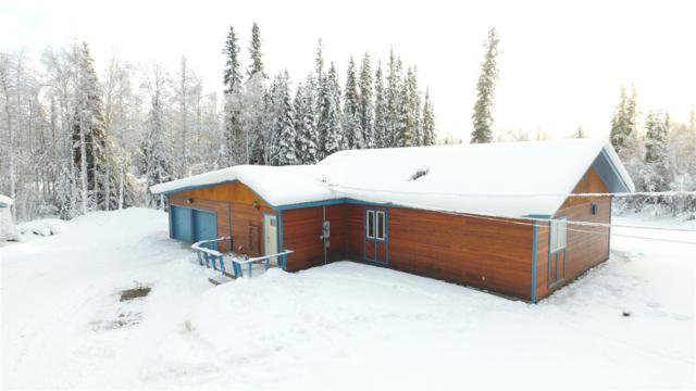 3216 Monkshood Lane, North Pole, AK 99705 (MLS #136379) :: Madden Real Estate