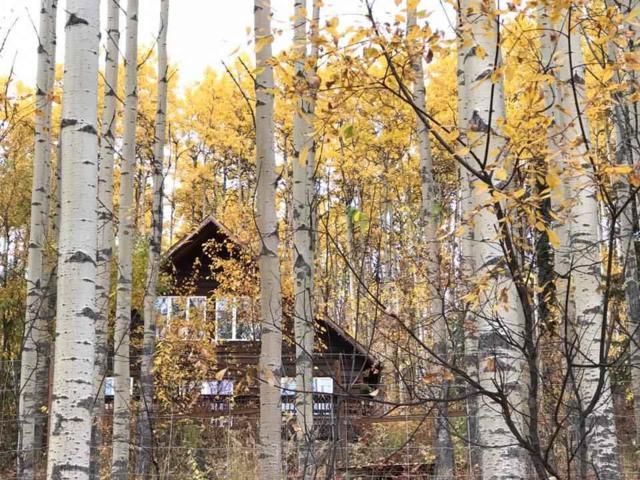4090 Krogstie Lane, Fairbanks, AK 99709 (MLS #136390) :: Madden Real Estate