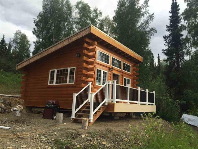 nhn Blackberry Drive, Fairbanks, AK 99712 (MLS #136451) :: Madden Real Estate