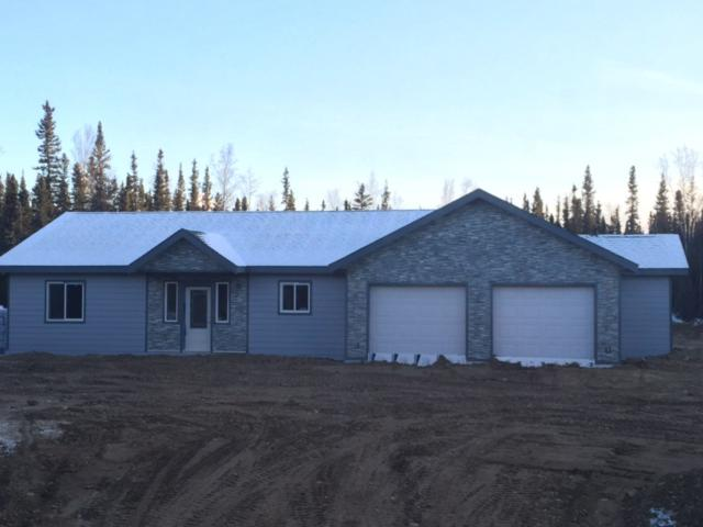 6615 Swan Drive, Delta Junction, AK 99737 (MLS #136465) :: Madden Real Estate
