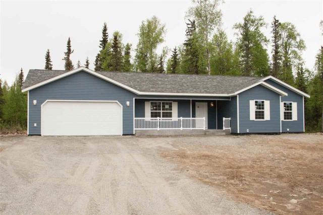 765 Birch Knoll Road, Fairbanks, AK 99712 (MLS #136473) :: Madden Real Estate