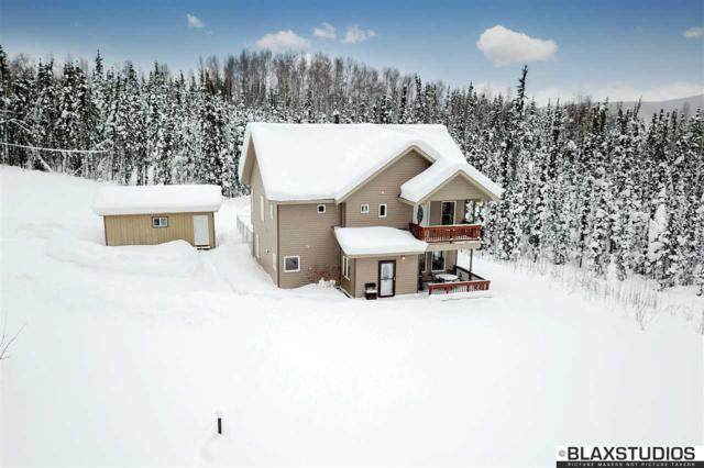 1518 Birch Hollow Court, Fairbanks, AK 99712 (MLS #136528) :: Madden Real Estate