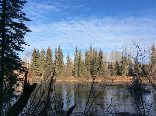 NHN Lucinda Court, North Pole, AK 99705 (MLS #136568) :: Madden Real Estate