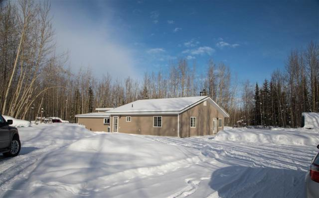 3372 Sharon Road, North Pole, AK 99705 (MLS #136579) :: Madden Real Estate