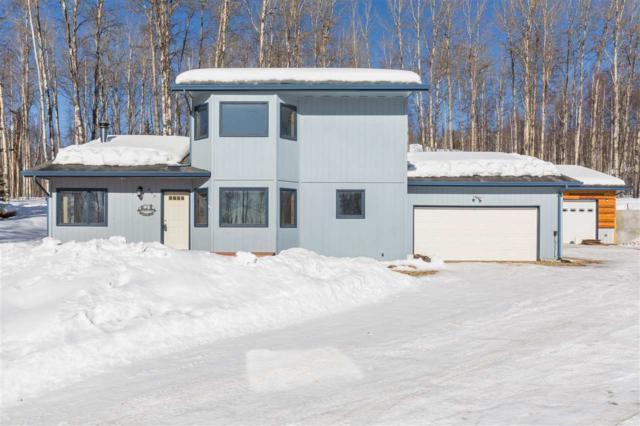 460 Snowy Owl Lane, Fairbanks, AK 99712 (MLS #136854) :: Madden Real Estate