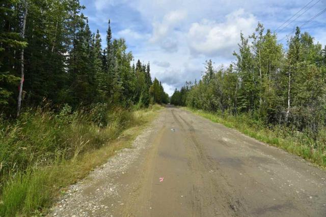 TL700 Willow Run, Fairbanks, AK 99709 (MLS #136878) :: Madden Real Estate