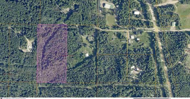 NHN N Grange Hall Road, Fairbanks, AK 99712 (MLS #136880) :: Madden Real Estate
