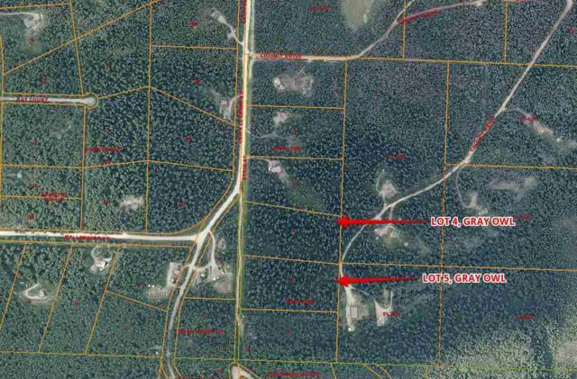 NHN Strix St, Fairbanks, AK 99709 (MLS #136881) :: Madden Real Estate