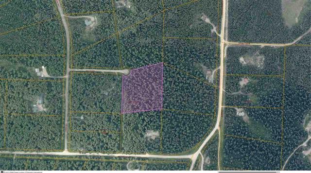 NHN Ray Court, Fairbanks, AK 99709 (MLS #136892) :: Madden Real Estate