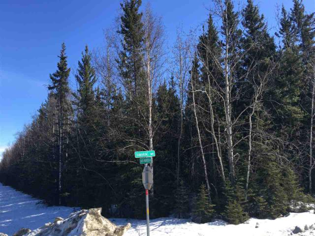 NHN Spruce Street, Delta Junction, AK 99737 (MLS #136905) :: Madden Real Estate