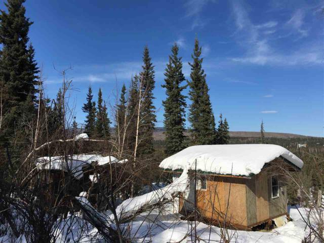 3120 Chena Ester Ditch Road, Fairbanks, AK 99709 (MLS #136912) :: Madden Real Estate