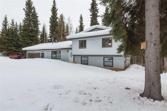 883 Ridge Loop Road, North Pole, AK 99705 (MLS #136915) :: Madden Real Estate