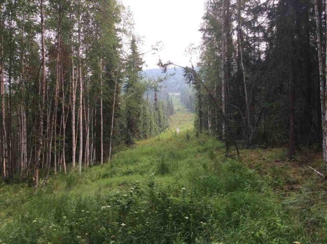 nhn Whistling Swan Drive, Fairbanks, AK 99712 (MLS #136957) :: Madden Real Estate